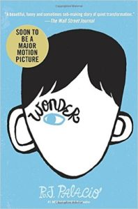 boy books wonder